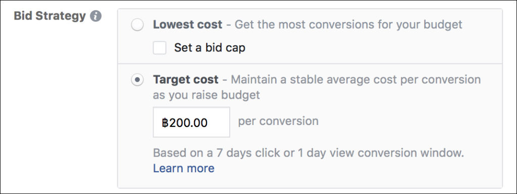 Facebook Ads - Bid Strategies